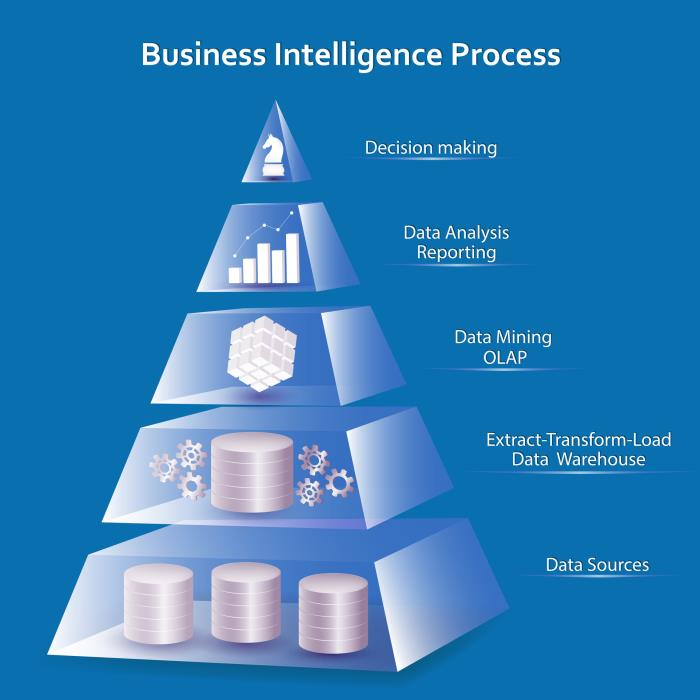 Ibis business intelligence systems
