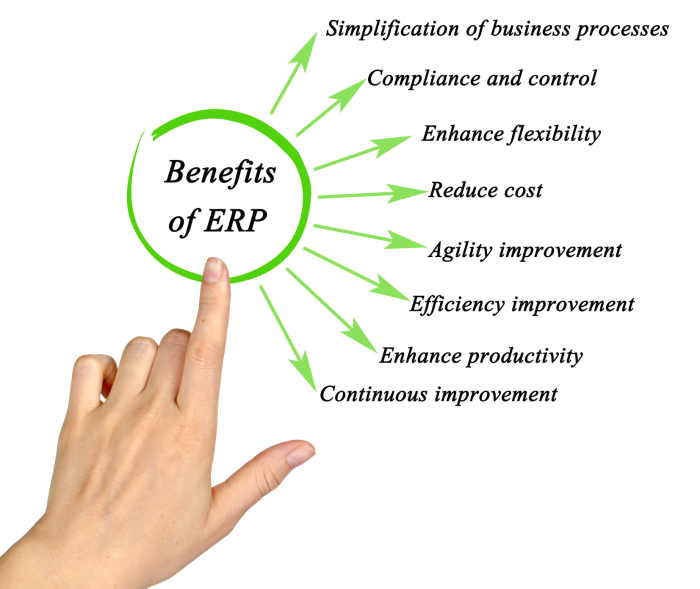 Ibis Business Intelligence Solutions Benefits of ERP